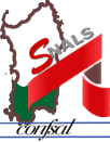 SNALS - Sindacato Nazionale Autonomo Lavoratori della Scuola